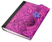 journal intime de violetta violetta. Black Bedroom Furniture Sets. Home Design Ideas